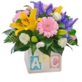 Baby Flowers and Gifts