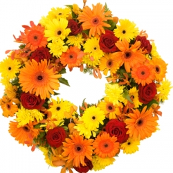 Sympathy Wreath Bright from $40
