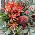 Florist Choice Native Bouquet from $30